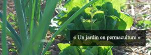 jardin-permaculture-hildegarde