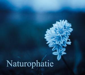 naturophatie-conseil-hildegarde