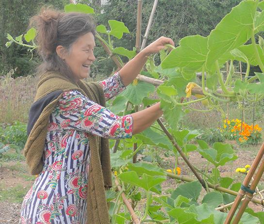 Cuisine hildegarde jardin nathalie cuisinons nos jardins for Jardin hildegarde
